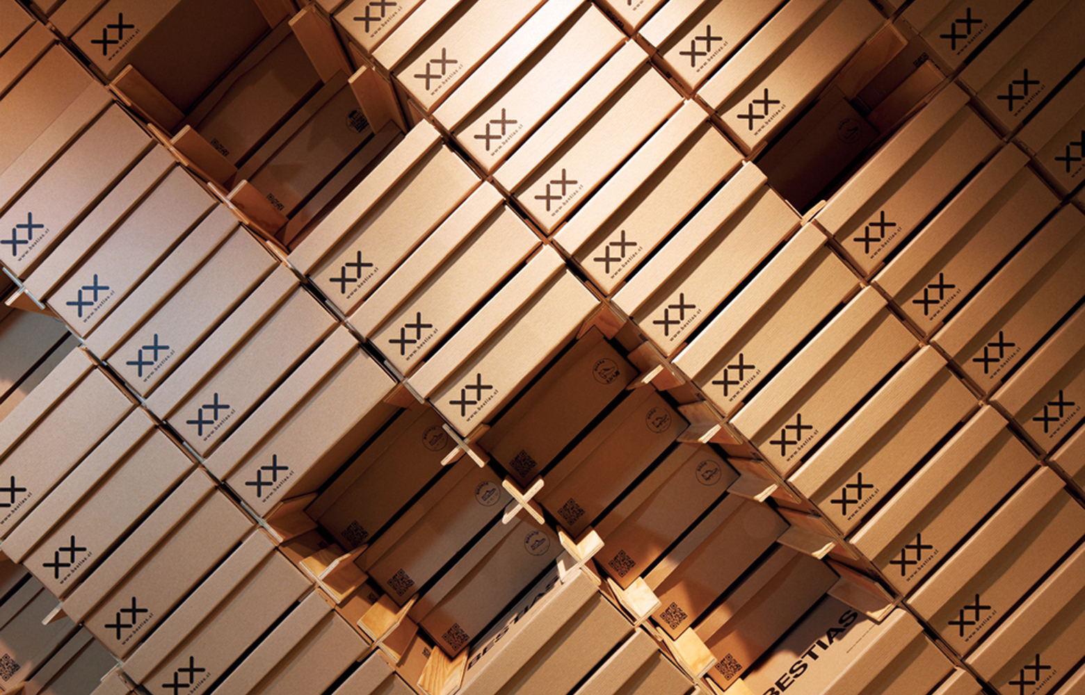 靴箱で店名が表現できる靴屋の店舗設計は、フレキシブルな専用 X シェルフ